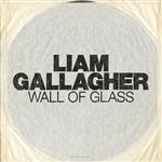 Carátula de: Wall of glass