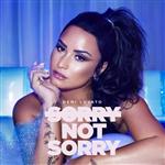 Carátula de: Sorry not sorry