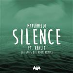 Carátula de: Silence (Remix)