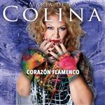 Carátula de: Corazón flamenco