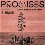 Carátula de: Promises