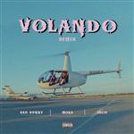 Carátula de: Volando (Remix)