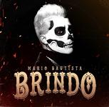Carátula de: Brindo