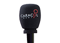 Escuche en vivo Caracol Radio