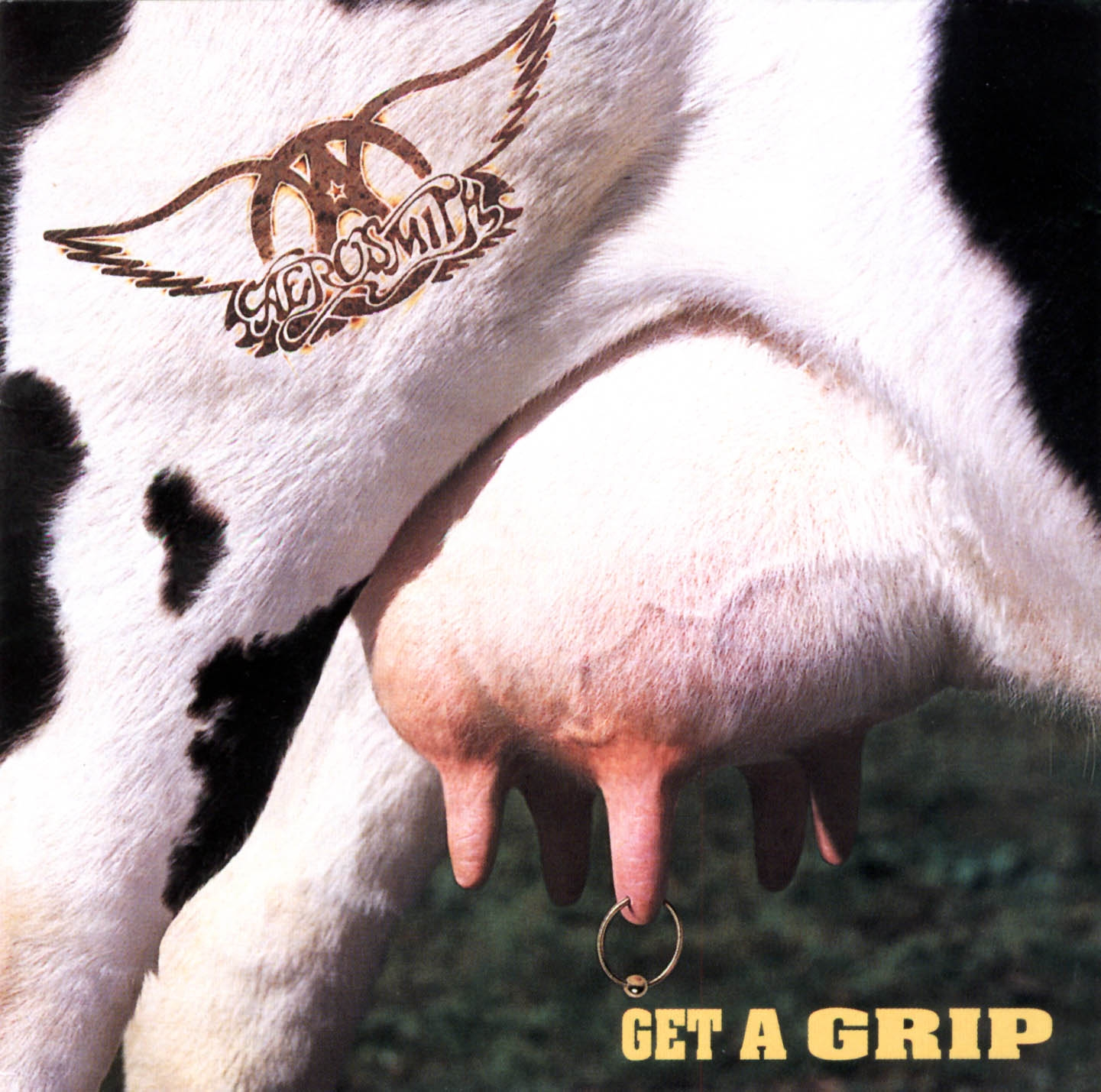 Get a grip (Edición internacional)