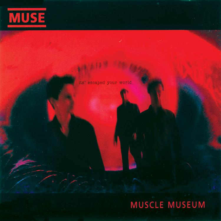 Muscle museum (Edición francesa)