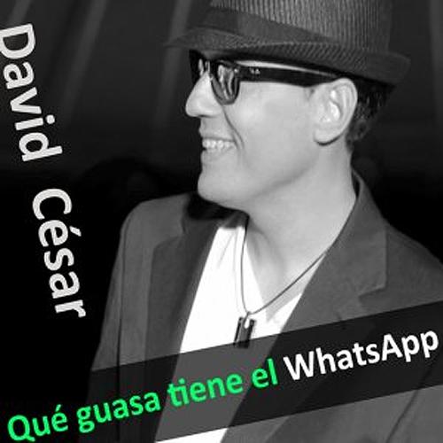 Qué guasa tiene el whatsapp