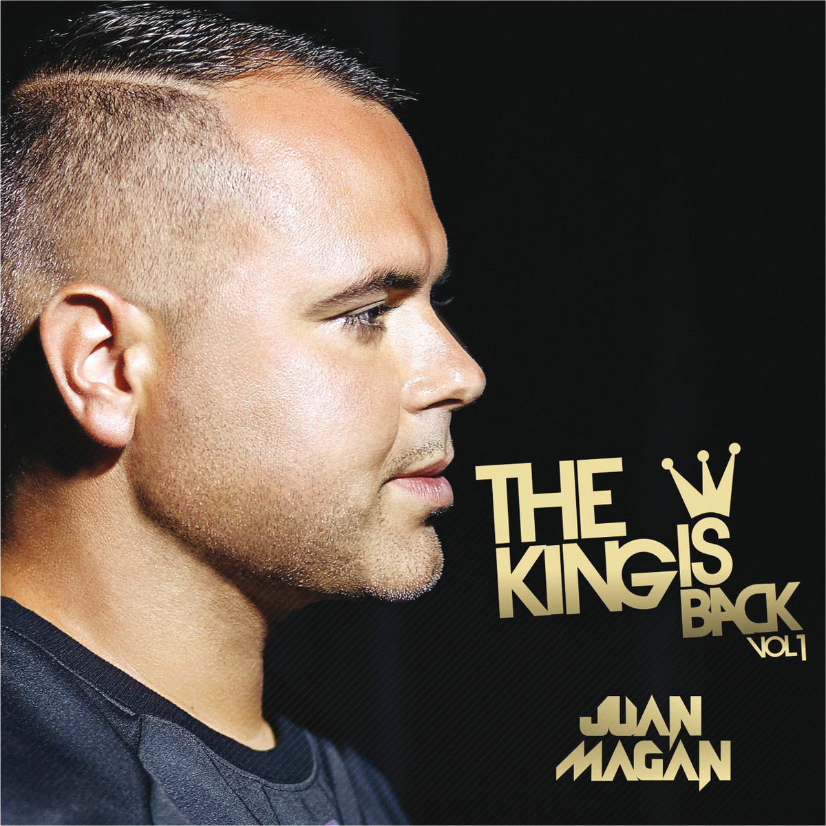 The king is back Vol. 1