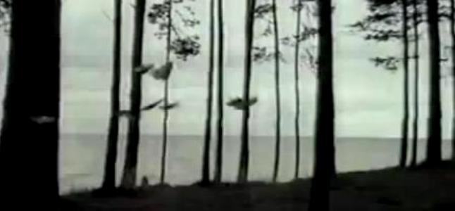 Videoclip: Sail away