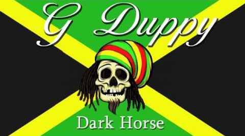 Dark horse (G Duppy reggae mix)