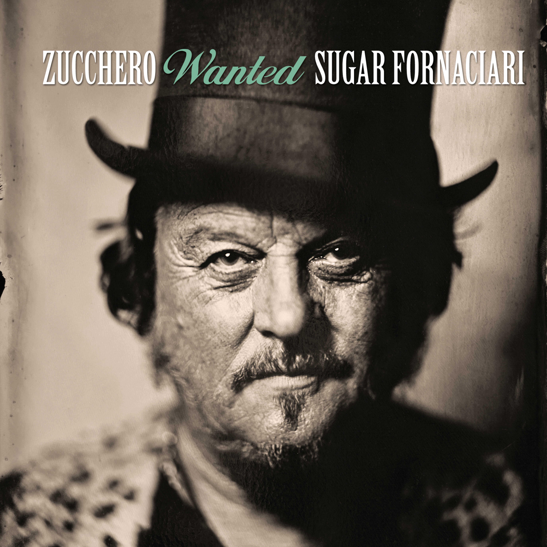 Wanted sugar Fornattari