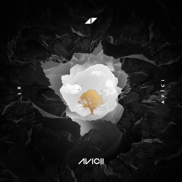 AVICI 01