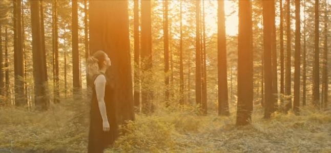 Videoclip: Esa chica